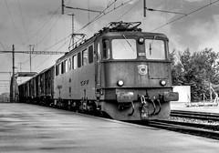 SBB Ae6/6 11455 (maurizio messa) Tags: railroad bw monochrome switzerland blackwhite railway trains bn svizzera bahn bianconero mau freighttrain ferrovia treni graubnden yashicafxd ae66 guterzuge