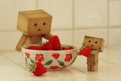 Ripe Strawberries Ripe! (.OhSoBoHo) Tags: red macro cute love fruit canon toy robot yummy strawberry kawaii organic freshfruit japanesetoy yotsuba danbo amazoncojp revoltech canoneos40d danboard  danbolove danbophotography amazoncardboardrobot littlebowlfromgoodwill danbostrawberry