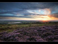 Magenta Glow (A-D-Jones) Tags: sun set clouds landscape purple heather magenta chorley rivington bolton pike horwich wigan anglezarke