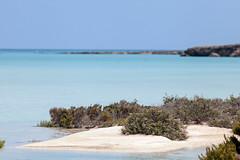 Le bleu des iles (Dlirante bestiole [la posie des goupils]) Tags: blue seaside redsea middleeast lagoon legend saudiarabia pirat isola monfreid farasanisland ilesdelgende redseasecret