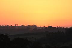 transitions (Rodrigo Alceu Dispor) Tags: sunset tree transition
