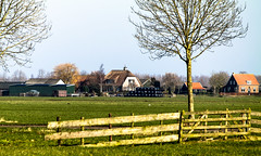 Graafland (Eduard van Bergen) Tags: life family houses light boy dog sun plant holland nature water netherlands girl dutch field grass cheese architecture barn yard rural cat out landscape outside parents living shoes tulips wind outdoor earth father daughter cottage mother nederland meadows samsung ground son apron soil land vista wife farmer agriculture grassland polder bas plain 50200mm pays hamlet olanda buiten leven niederlande klompen gezin cultivated hubbie graafland liesveld molenwaard nx1000