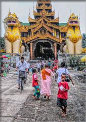 The golden lions (Bruno Zaffoni) Tags: street temple yangon burma buddhism myanmar shwedagonpaya