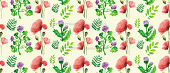 Print (Gal'ko) Tags: new pink blue summer wallpaper white plant flower art texture nature floral beautiful beauty fashion illustration vintage watercolor painting print tile design leaf spring pattern blossom random drawing background decoration like style structure petal textile ornament fabric poppy daisy bloom casual popular vector isolated wrapper seamless cornflower repeat tracery ditsy