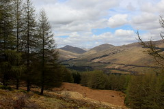 Strath Fillan (Walruscharmer) Tags: scotland plantation westhighlandway stirlingshire ewichforest