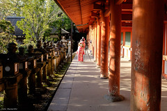 Nara,  (caploncour) Tags: temple shrine nara parc daim sanctuaire japonprintemps2016