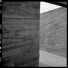 Magma (Barnaby Nutt) Tags: 120 film home concrete aloe tenerife medium format neopan across vera processed yashica magma shuttered ilfotechc
