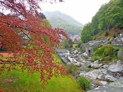"""ROSAZZA - (Biella) - """" EXPLORE """" (cannuccia) Tags: alberi montagne landscape explore piemonte piante paesaggi monti panorami rosazza virgiliocompany"""
