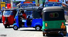 Orderly Chaos (Mahmoud R Maheri) Tags: street cars buses chaos crossing traffic srilanka toktok busystreet