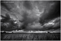 Atmosphere (Steven Fergus) Tags: sunset sky storm field clouds landscape photography farm dramatic ayrshire stevenfergus