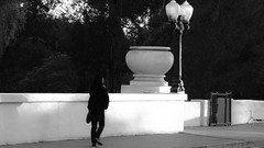 Going Home (Rand Luv'n Life) Tags: california park bridge trees our white lamp monochrome urn wall lady walking leaving san post outdoor diego daily exit balboa challenge cabrillo odc