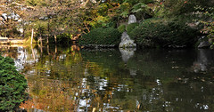 Quiet Afternoon (Seeing Visions) Tags: park trees sculpture distortion reflection water japan carved pond kyoto afternoon buddha peaceful jp bushes 2009 kiyomizudera purewater raymondfujioka