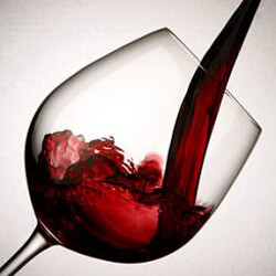 Vinos - Tintos