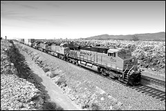 Eastbound at Ash Hill (greenthumb_38) Tags: california railroad blackandwhite bw train blackwhite route66 mojave duotone locomotive bnsf mojavedesert thecut motherroad sanbernardinocounty railroading desertlife nationaltrails rte66 themotherroad nationaltrailshighway ashhill needlessub jeffreybass natltrailshwy ludlowadventure2012 thecutatashhill