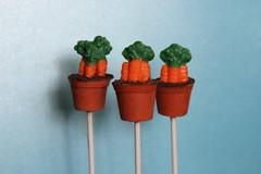 Pots of Carrots Cake Pops (Nadia Bakes) Tags: easter pot carrots cakepops