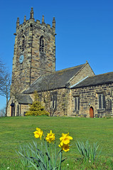 St Michael's in the Spring (littlestschnauzer) Tags: uk flowers blue west flower green tower church grass st parish yellow stone garden 1 march michael spring nikon skies village cut yorkshire grade daffodil trumpets archangel grounds daffodils michaels listed 2012 huddersfield emley d5000