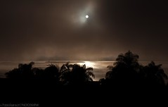 Clearing the fog... (Pablin79) Tags: morning sun mist argentina sunshine fog digital canon reflections river eos reflex silhouettes 5d pipa misiones posadas markii 2011 24105mm canoneos5dmarkii 5dmkii pabloreinsch pabloreinschphotography pablin79 canonef24105mmf4lefisusm