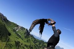 Eagle experience hike (Frstentum Liechtenstein) Tags: liechtenstein wandern malbun adlerwanderung