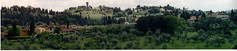 italy 2002 panorama 6 (lilbuttz) Tags: trees italy panorama courtney hillside villas accent foothillsemesterabroadspring2002 accentflorencespring2002