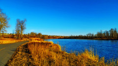The Bow River Pathway (LostMyHeadache: Absolutely Free *) Tags: blue trees houses light shadow sky nature water grass yellow river evening spring nikon day clear pathway magichour davidsmith calgaryalbertacanada
