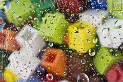 LEGO bricks through water drops (Pedro Nogueira Photography) Tags: water toys miniature drops agua lego bricks gotas brinquedos miniaturas pedronogueira pedronogueiraphotography