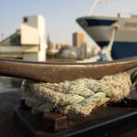 Cleveland Waterfront thumbnail