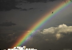 Life is like a rainbow (Naveen Somayaji) Tags: rain rainbow bangalore bow karnataka rainbowbangalore