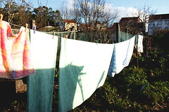 hanging out in the sun (del yelmo photography) Tags: sun colors garden colours dry galicia galiza ight yelmo huerto cothes delyelmo delyelmophotography