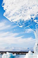 Water drop falling from a piece of ice melting on the beach close to the glacial lagoon Jökulsárlón, Iceland   Goutte d'eau qui tombe d'un morceau de glace sur la plage près du lac glaciaire Jökulsárlón, Islande (Vincent Demers - vincentphoto.com) Tags: voyage trip travel blue sky ice water iceland melting waterdrop lagoon drop glacier iceberg climatechange jokulsarlon globalwarming islande jökulsárlón travelphotography glaciallagoon icemelting