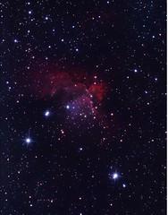 NGC7380 The Flying Horse Nebula (Chuck Manges) Tags: sky horse canon stars ed star space ngc apo telescope nebula astrophotography t3 dslr deepspace 1100 t3i cepheus refractor 102mm deepsky apochromatic 600d nebulosity 1100d st80 dslrastrophotography Astrometrydotnet:version=14400 canont3 canont3i ed102t startools germanequatorial