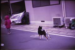 (leaping_time) Tags: street japan 50mm bessa velvia 100 f11 nokton 2012 r3m