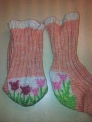 tiptoe socks (bitboth) Tags: socks knitty flickrandroidapp:filter=none