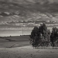 Countryside (Marcelo Donadussi) Tags: bw brasil square landscape canon5d sq rs 2012 cruzalta