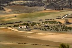 IMG_6226 Abandoned small Farm in Consuegra,Spain (jaro-es) Tags: españa nature canon landscape spain natur natura landschaft spanien naturesfinest spanelsko naturewatcher eos450 naturemaster