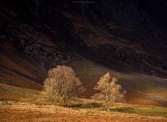 Light and Dark (Roksoff) Tags: autumn reflection river scotland highlands nikon argyll cottage scottish calm na ridge glencoe 24mm mor buachaille nam etive aonach eagach lochaber lochan d600 stob beith coire locan achtriochtan coupall hachlais
