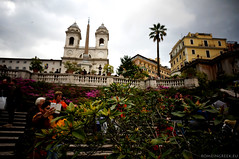 "Le azalee di Trinità dei Monti • <a style=""font-size:0.8em;"" href=""http://www.flickr.com/photos/89679026@N00/13922500772/"" target=""_blank"">View on Flickr</a>"