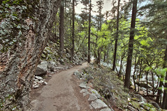 Mist Trail, Yosemite National Park (Mastery of Maps) Tags: california park ca trees green nature pine forest outdoors waterfall nationalpark spring natural path falls trail yosemite yosemitenationalpark naturalbeauty sierranevada yosemitevalley vernalfalls usnationalpark 2016 misttrail