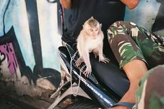 monkeybike (tomf10) Tags: bali olympus stylus infinty