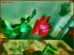 *Happy... (MONKEY50) Tags: red plant flower green colors rose digital soe hypothetical musictomyeyes autofocus beautifulphoto artdigital shockofthenew flickraward awardtree pentaxart contactgroups exoticimage mixofflowers netartii pentaxflickraward