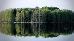 Iisalmi (Tuomo Lindfors) Tags: lake reflection water suomi finland island dxo vesi jrvi saari heijastus iisalmi filmpack paloisjrvi laukkusaari
