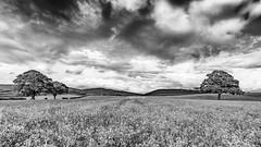 West Kilbride (ianmiddleton1) Tags: nature landscape ayrshire hss sliderssunday