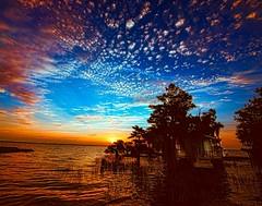 Blue Cypress Sunrise (BobHartmannPhotography) Tags: usa landscape everglades l fl 365 hartmann osprey 1365 bluecypresslake middletonsfishcamp bobhartmann bobhartmannphotography bobhartmanncom bcc201405 exhibitionannkolb2016