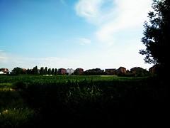 Campi Coltivati a Rivoli (TO) (simone.dibiase) Tags: campi coltivati rivoli ferrovia stradina di campagna verde cielo nubi erba
