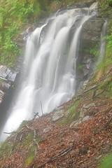Parque natural de #Gorbeia #Orozko #DePaseoConLarri #Flickr -114 (Jose Asensio Larrinaga (Larri) Larri1276) Tags: 2016 parquenatural gorbeia naturaleza bizkaia orozko euskalherria basquecountry