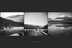 triptych early morning at lake rotoiti jetty bw (hueymilunz) Tags: bw mist mountain lake nature water landscape triptych outdoor squareformat nz lakerotoiti nelsonlakes