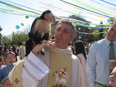 Stewart and the easter monkey (Churchrez) Tags: life church lost reading midwest worship singing transformation pray upper sing mission bible healing missions least communion sermon bishop sanctuary anglican connection prayers praise liturgy transform connect wheaton preaching serve heal readings evangelical resurrection diocese churchrez churchrezorg