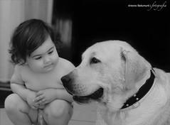Il miglior amico dell'uomo (Antonio Bellumunti) Tags: portrait blackandwhite bw children nikon labrador child d200 dslr ritratto biancoenero