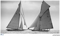 IV Puig Classica_110714nm_367A (PUIG VELA CLASSICA) Tags: classic sailing tuiga moonbeamiv