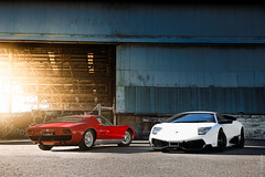 Timeline (Tom Fraser Photo) Tags: blue red white cool sweet awesome s lamborghini sv terrific miura miuras folkphotography lp670sv gilfolk stefansobot