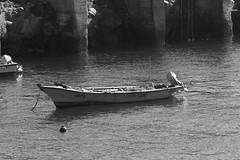 Chungungo 05 (fmateluna_90) Tags: chile naturaleza muro blanco sol de muelle mar agua y o negro paz paisaje cielo fotos nubes mismo contraste serena motor region turismo ti pesca todos horizonte norte ver bote pescadores piedra caleta cuarta meditacion chungungo